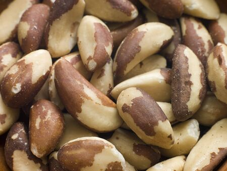 Brazil nuts Stock Photo - 4462155