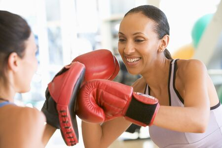 Women Boxing Together At Gym photo