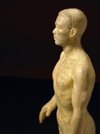 male likeness: El meridiano de acupuntura L�neas Figurine