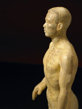 likeness: Meridian Lines On An Acupuncture Figurine Stock Photo