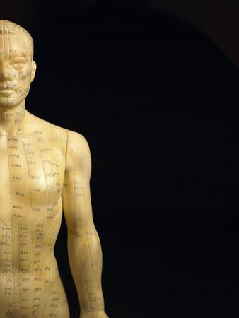 Meridian Lines On An Acupuncture Figurine Stock Photo - 4638984