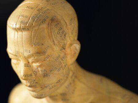 wallingford: Meridian Lines On An Acupuncture Figurine Stock Photo