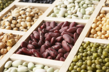 aduki bean: Selection Of Beans Stock Photo