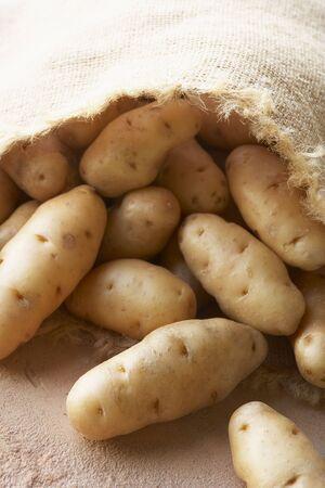 Fresh Potatoes In Hessian Sack Stock Photo - 4638907