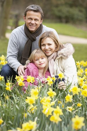 Family Group In Daffodils photo