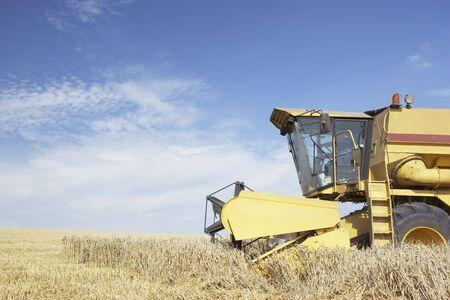 Combine Harvester Working In Field Stock Photo - 5041027