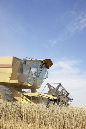machinery space: Combine Harvester Working In Field