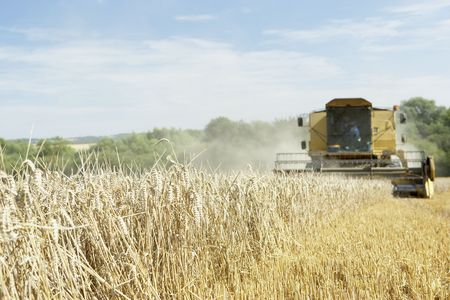 Combine Harvester Working In Field Stock Photo - 5041010