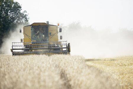 Combine Harvester Working In Field Stock Photo - 5040807