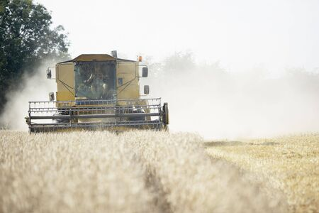 Combine Harvester Working In Field Stock Photo - 5040807