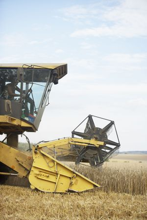 Combine Harvester Working In Field Stock Photo - 5040793