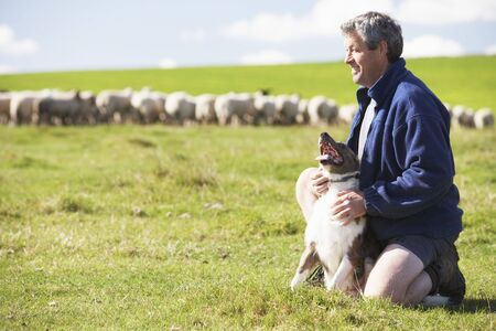 pastor de ovejas: Granja trabajador Con reba�o de ovejas