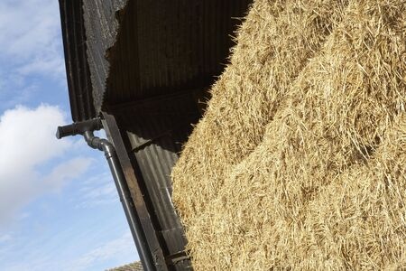 stored: Hay Bales Stored In Barn