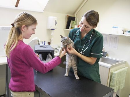 Young Girl Bringing Cat For Examination By Vet photo