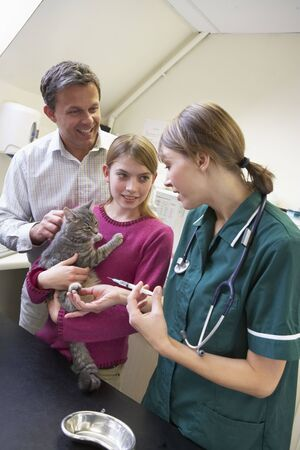 vetinary: Girl And Father Taking Cat For Examination By Vet