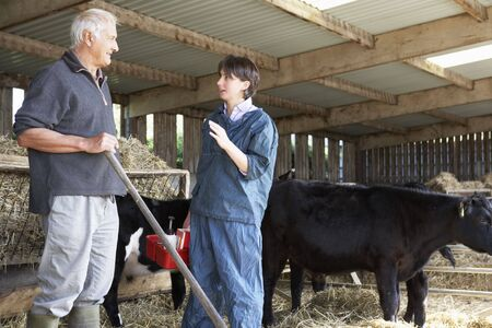 vetinary: Farmer Having Discussion With Vet