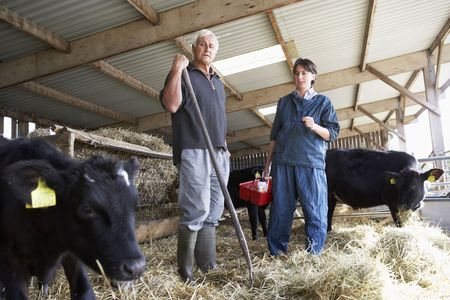 Farmer Having Discussion With Vet Stock Photo - 5043393