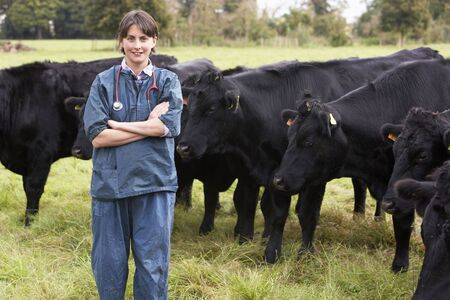 vetinary: Portrait Of Vet In Field With Cattle