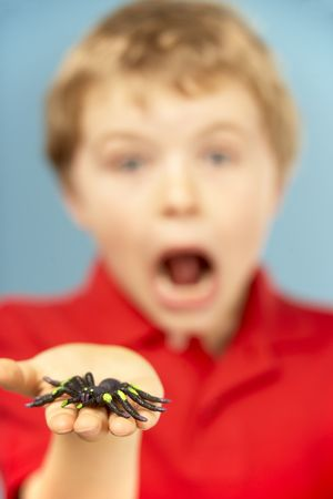 mischievious: Young Boy Holding Plastic Spider