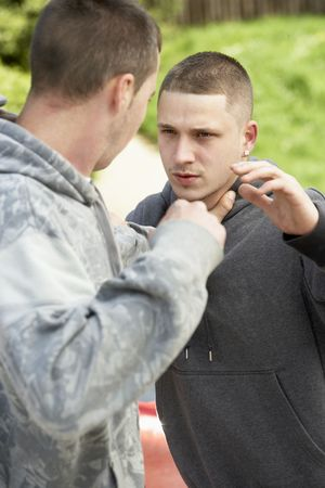 people fighting: Two Young Men Fighting Stock Photo