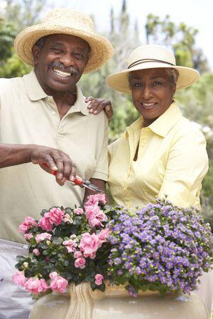 Senior Couple Gardening Together photo