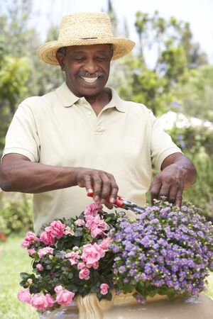 Senior Man Gardening photo