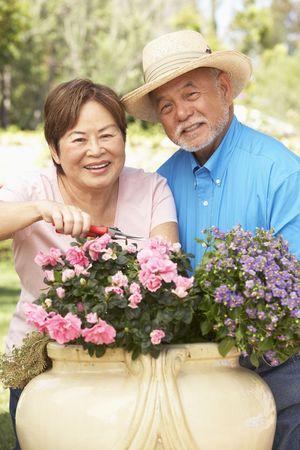 asian senior: Senior Couple Gardening Together Stock Photo
