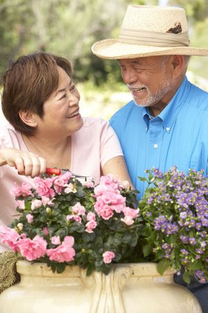 asian gardening: Senior Couple Gardening Together Stock Photo