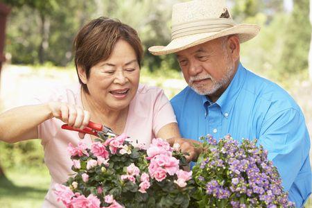 年配のカップルが一緒にガーデニング