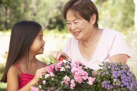 asian gardening: Granddaughter And Grandmother Gardening Together