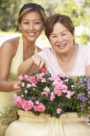 Mother With Adult Daughter Gardening Together Stock Photo - 6142951