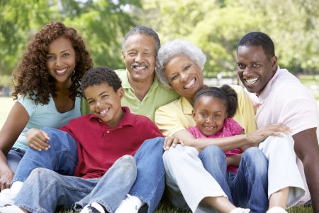 Portrait Of Extended Family Group In Park Stock Photo - 6456585