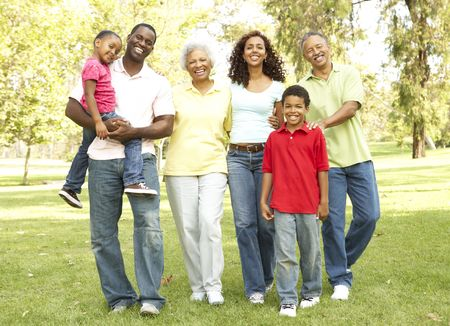 Portrait Of Extended Family Group In Park Stock Photo - 6456367