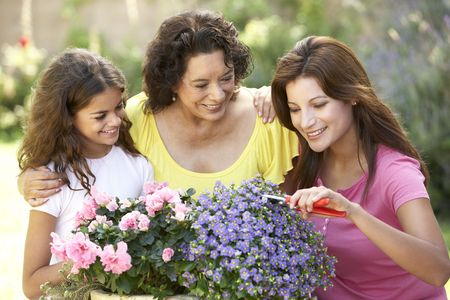 Senior Woman With Adult Daughter And Granddaughter Gardening Together Stock Photo - 6456478
