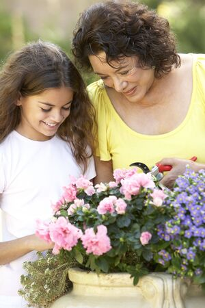 Grandmother And Granddaughter Gardening Together Stock Photo - 6456493