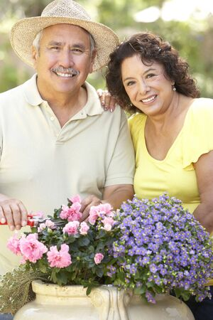 hispanic women: Senior Couple Gardening Together Stock Photo