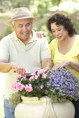 Senior Couple Gardening Together photo