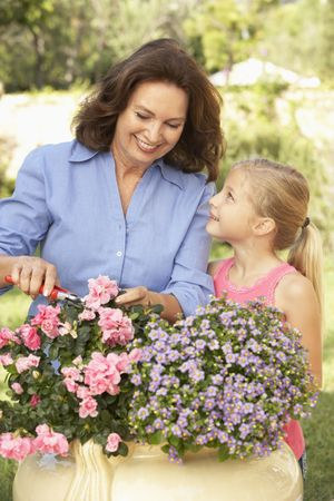 Grandmother With Granddaughter Gardening Together Stock Photo - 6452548