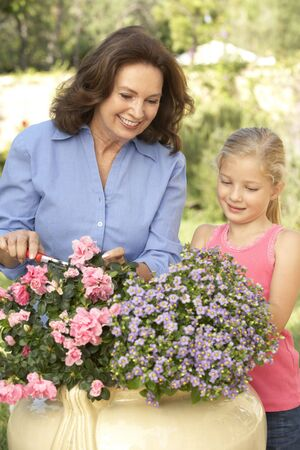 Grandmother With Granddaughter Gardening Together Stock Photo - 6452473