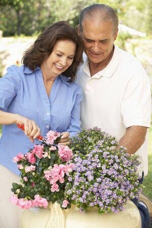 Senior Couple Gardening Together Stock Photo - 6451945