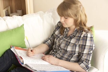 Teenage Girl Studying At Home Sitting On Sofa Stock Photo - 6450914