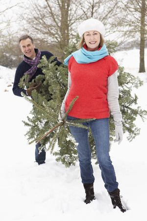 Senior Couple Carrying Christmas Tree In Snowy Landscape photo