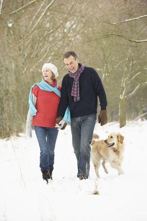 senioren wandelen: Senior paar lopen hond door besneeuwde bossen