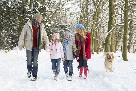 ni�os caminando: Familia Walking Dog a trav�s de Woodland Snowy  Foto de archivo