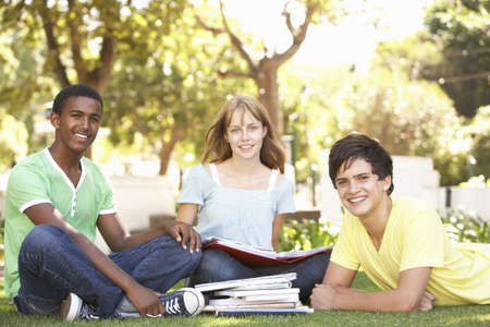 Group Of Teenage Students Chatting Together In Park Stock Photo - 8108665
