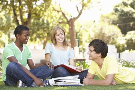 Group Of Teenage Students Chatting Together In Park photo