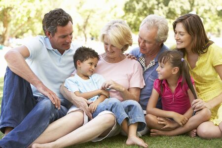Extended Group Portrait Of Family Enjoying Day In Park Stock Photo - 8108727