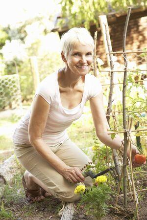 ひざまずく: 年配の女性の庭でリラックス