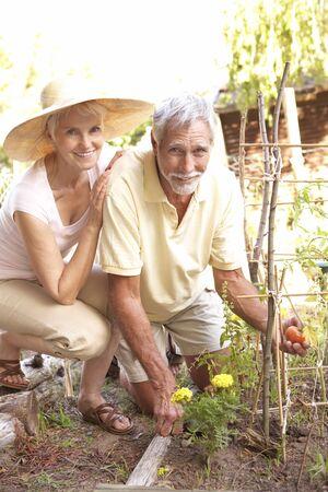 Senior Couple Relaxing In Garden photo