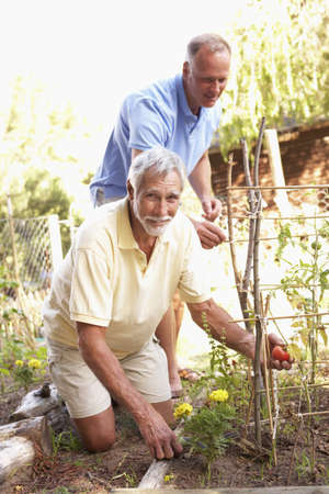 Senior Man And Adult Son Relaxing In Garden Stock Photo - 8108881